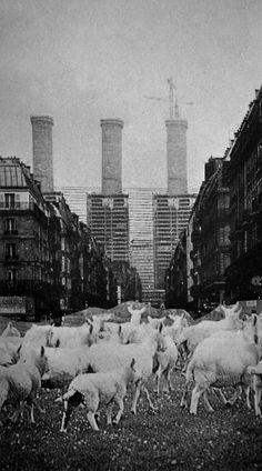 Laboratoire Urbanisme Insurrectionnel: Architecture Radicale | ECOLOGIE