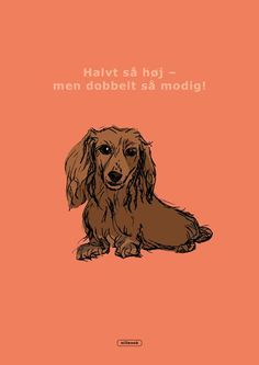 Big Love, Love Of My Life, Dachshund, Poppies, Movie Posters, Art, Pet Dogs, Art Background, Weenie Dogs