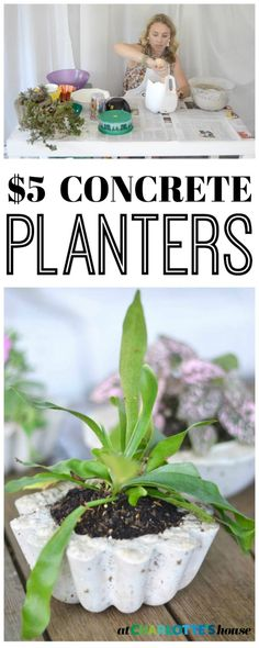 Make these amazing DIY concrete planters in under an hour for $5... would be a great gift.