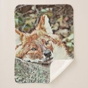 Holiday Cards, Christmas Cards, Picnic In The Park, Edge Stitch, Outdoor Events, Christmas Card Holders, Cuddling, Keep It Cleaner, Fox