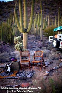 http://www.ritzcarlton.com/en/Properties/DoveMountain/Recreation/OutdoorExperiences.htm