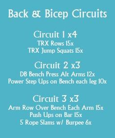 Back and Bicep Circuit