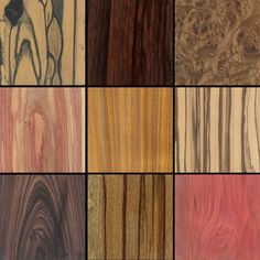 The Wood Database — browse all the beautiful colors and patterns of wood from around the world.