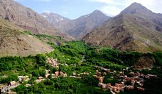 Whether you want to Day trip excursion from Marrakech, it's one of the best popular market towns in the world and its lively nature and enjoyable surroundings.