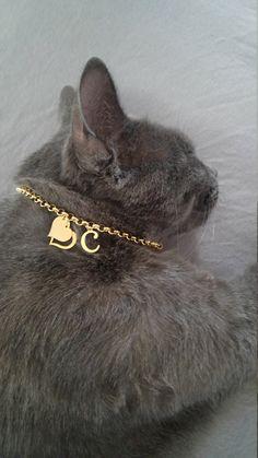 Cat collar cat name cat lish cat id tags pet id personalized cat collar cat custom cat tag custom collar for cat tag cat id kitten collar by OlaJewelryDesign on Etsy