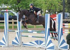 #competition #horse #horseshow #richmondbc #vancouver #vancity