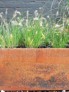 Plantenbakken van metaal (Nieuw in Nederland!) Garden Yard Ideas, Helpful Hints, Herbs, Plants, Instagram, Balcony Ideas, Organize, Gardening, Future