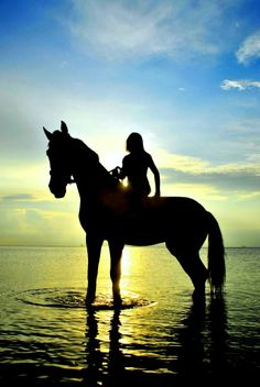 Imagine a cool breezy night in Hawaii,riding this beautiful horse , watching the sunset in the distance .Then you look up toward the sky and you see changing colors of reds, blues,purples,pinks...