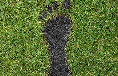 carbon-footprint-lg.jpg 500×325픽셀