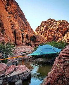 Tentsile Stingray Tree Tents Canion Over Water | by Trekking Addicts