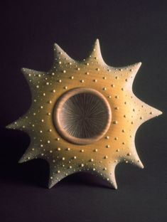 Radiolarian Vessel I 1998 Diameter: 250mm English sycamore, acrylic ink, polyester resin and acrylic texture paste ©Louise Hibbert