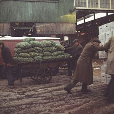 Old Covent Garden capture everyday moments in the vanished fruit, vegetable and flower markets.