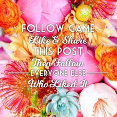 Follow Game! 1) Follow me!  2) Like this post. 3) Follow everyone who liked this post  4) Share the post. 5) Watch the followers roll in  Other