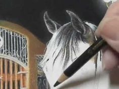 "Pastel Painting Demonstration - Arabian horse by Roberta ""Roby"" Baer PSA - YouTube"
