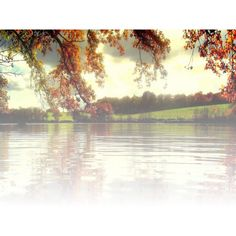 Mes tubes paysage transparent ❤ liked on Polyvore featuring backgrounds, tubes, landscape, water, nature, effects, fillers and scenery