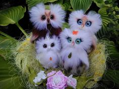 16 отметок «Нравится», 1 комментариев — Anna Magic Owl Flower (@magic.owl) в Instagram: «Семья совушек Наввий и Табити, Молли и кроха Ивва. Сухое валяние шерсти 100%, лепка холодного…»