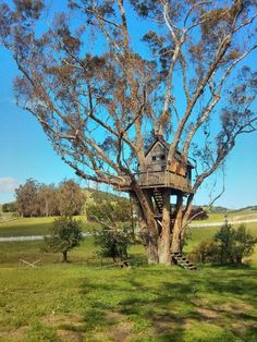 The Treehouse at Swallowtail Studios, in Petaluma, CA
