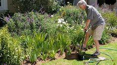 Lide pracujici na zahrade jsou se zivotem nejspokojenejsi a netrpi depresemi