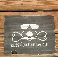Ready to Ship Cats Don't Know Sit Sign Plaque Cool Dog Duke Logo Beware Warning Pet Gift Distressed Wood