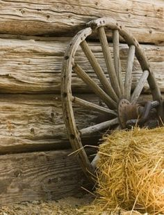 Loved our old wagon wheel...left it with the barn when we moved to the woods.....