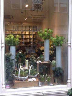 Moyses Stevens Chelsea Spring Window