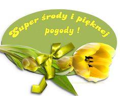 dni-tygodnia,-życzenia-na-środę,-piękna-karta-okazjonalna,-tulipany,-żółte-tulipany-z-kokardą-ozdobny-napis,-wiosna,-tulipany-do-wazony,pięknej+pogody,.png (792×633)