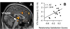 Activity in the Ventral Tegmental Area (VTA) due to satisfaction from LOVE