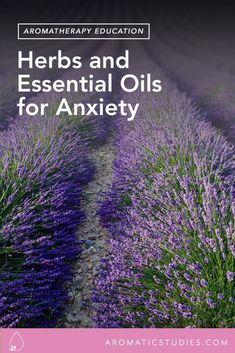 Herbs and Essential Oils for Anxiety // New York Institute for Aromatic Studies