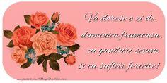 Best Dance, Good Morning, Rose, Flowers, Mai, Sign, Facebook, Google, Buen Dia