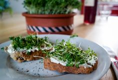 Kresse Brot - Rezept für Brot mit selbstgemachtem Frischkäse-Aufstrich und Kresse. Einfach und schnell Avocado Toast, Sandwiches, Breakfast, Food, Appetizers, Yummy Food, Food And Drinks, Portable Food, Cress