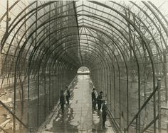 Interior walkway of bird cage, St. Louis Zoo. (1922)