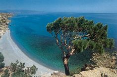 Car Hire for our guests in Crete, Where Car Rental is the ideal solution to move around the island. Countless beaches, mountains, valleys, canyons, luxury hotels, small traditional apartments, great night life, gourmet restaurants, traditional taverns, lots of historical and archeological sites, hospitable people, traditional villages, huge biodiversity of fauna and flora. All combined in a magical way so as to compose this 250 kilometer-long paradise. Crete simply has it ALL!!!
