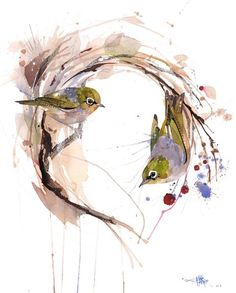 Official Rachel Walker Page. New Zealand watercolour, spray paint, pen and ink artist creating splashy celebrations of native and rare animals. Eye Painting, Painting Prints, Paintings, Watercolor Painting, Rachel Walker, Street Art, Nz Art, Walker Art, Bird Artwork