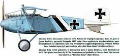 Albatros DIII Hermann Frommherz