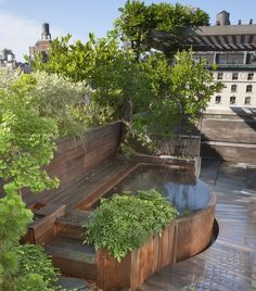 Rooftop Pools & Spas – Design & Construction