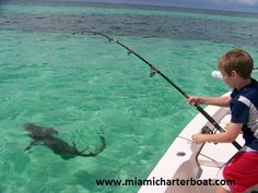 Miami give a top class services to fishing charters. That can spare your vacation on the you generally won't have to waste any of your time to discover the fish charter that you need so come up with family and give them new way enjoying life.