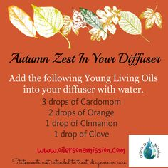 Autumn Zest In Your