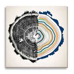 Wildon Home ® 'Dissection' by New Era Original Graphic Art on Canvas