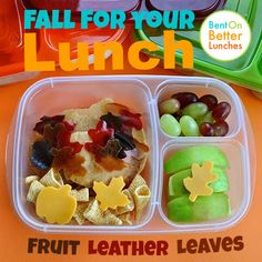 Fall for your lunch with DIY Fruit Leather Leaves!
