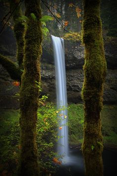 """South Falls, Lower Silver Creek, Silver Creek State Park, Silverton, Oregon"""