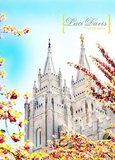 I would love to be able to just travel all around the world and visit every single temple of the Lord!
