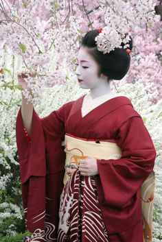 cardmading inspiration photo: geisha with cherry blossoms in backgroun ...