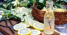 Využijte bezové květy pro své zdraví Herb Garden, Herbs, Table Decorations, Food, Essen, Herbs Garden, Herb, Meals, Yemek