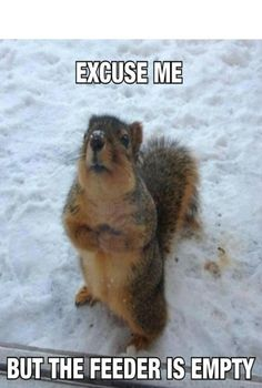 Excuse Me #funny