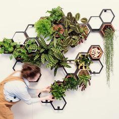 Indoor Plant Wall, Indoor Plants, Wall Mounted Planters Indoor, Wall Garden Indoor, Plant Wall Diy, Living Wall Planter, Diy Living Wall, Indoor Living Wall, Living Walls