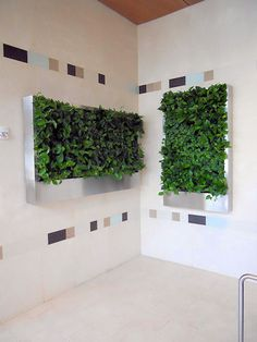 Green Wall design at Baylor Cancer Center in Dallas, Texas. http://www.ambius.com/designers/patti-moody/case-studies/index.html#