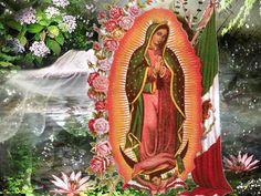 virgencita maria con flores a sus pies | 12 de Diciembre día de la Aparición de la Virgen de Guadalupe en ...
