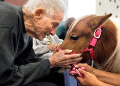 Jack Cutler smiles as he pets Tootsie, a miniature horse, at the Total Life adult day care center at Bond Park in Cary, N.C., on Oct. 24, 2012. With their calm personalities and small size, Tootsie and her companion Carmen (not pictured) work well as therapy animals. Owner Sandy Spooner co-founded Horse Hugs as way to showcase their unique ability to help patients in hospitals, nursing homes and assisted care facilities deal with pain, loneliness and depression.