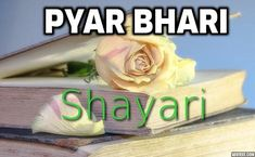 Pyar Ki Shayari is the best form of expressing your emotions with someone you love.  If you enjoy these Hindi Shayari then don't forget to share this collection of  Pyar Ki Shayari with your loved ones by sending him / her the best  collection exclusively available on our website Shayari In Hindi, Toot, Forget, Website, Collection