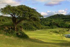 Coco Beach Mountain Golf Course.